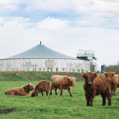 B wie Biogasanlage
